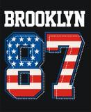 Images de texture de vecteur de drapeau de Brooklyn New York Amérique Illustration Libre de Droits