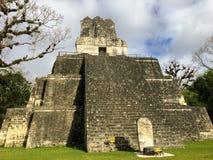 Images des ruines de Tikal, ruines maya antiques profondément dans les forêts tropicales images libres de droits