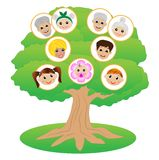 Images of family on genealogical tree Stock Photo