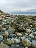 Whidbey Island, Washington royalty free stock photo