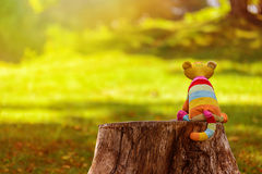 Imaginary friend. Stuffed toy cat sitting on stump and waiting for friend to come Royalty Free Stock Image