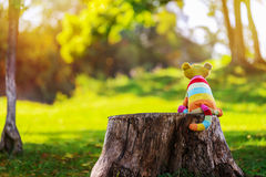 Imaginary friend. Stuffed toy cat sitting on stump and waiting for friend to come Royalty Free Stock Photography