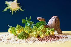 Imaginary landscape from food Royalty Free Stock Image