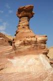 Imagination de la nature Photos stock