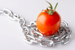 Imaginations With A Red Tomato Royalty Free Stock Photo