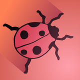 Imaginative ladybug Stock Images