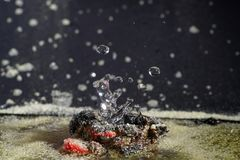 Imaginative sculptures of water droplets Royalty Free Stock Images