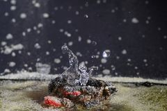Imaginative sculptures of water droplets Royalty Free Stock Photo