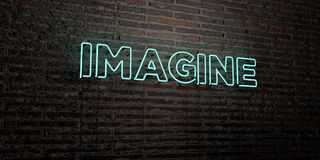 IMAGINE -Realistic Neon Sign on Brick Wall background - 3D rendered royalty free stock image Stock Photography