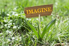 Imagine. On wooden sign in garden with white spring flower Stock Photography
