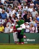 Imbécile le monstre vert Image stock