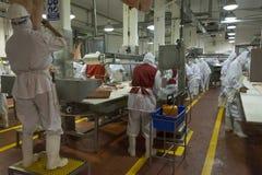 Imballaggio della carne Fotografia Stock