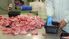 Imballaggio delle fette della carne in scatole fotografie stock