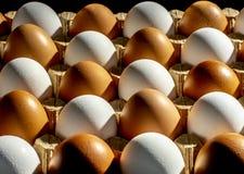 Imballaggio delle uova gialle e bianche del pollo sistemate in una composizione diagonale su un fondo nero immagine stock