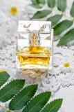 Imballando con il cosmetico su fondo bianco con i fiori e le foglie del campo Il concetto di estate e dell'idea per la pubblicità Immagini Stock Libere da Diritti
