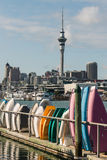 Imbarcazioni a remi impilate nel porticciolo di Auckland Fotografie Stock Libere da Diritti