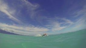 Imbarco dell'aquilone dell'uomo nell'oceano archivi video