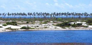 ImbassaÃ, Бахя Стоковая Фотография RF