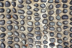 Imbedded pebbles Stock Image