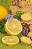 Imbir cytryna i korzeń Zdjęcia Royalty Free