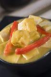 imbirowego mangowego kumberlandu korzenny tofu zdjęcie stock