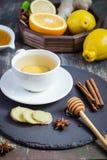 Imbirowej gorącej immunitetowej reklamiarskiej witaminy naturalny napój Z cytrusem, miód, cynamon i składniki, Obraz Royalty Free