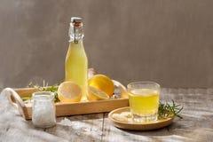 Imbirowy Ale Domowej roboty cytryna i imbirowy organicznie sodowany napój -, kopia obrazy royalty free