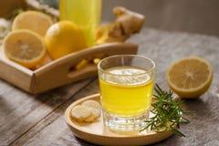 Imbirowy Ale Domowej roboty cytryna i imbirowy organicznie sodowany napój -, kopia obraz stock