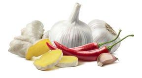 Imbirowy czosnku chili skład odizolowywający na białym tle Zdjęcie Stock
