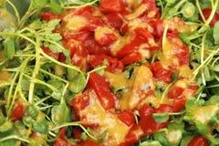Imbiru, Watercress i Czerwonego pieprzu sałatka, Zdjęcie Stock