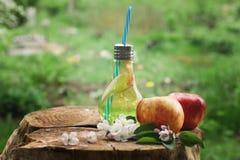 Imbottigli la tazza con un tubo, riempito di limonata della mela accanto alle mele rosse su un ceppo Immagini Stock