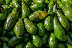 Imburri la frutta per commercio, vendi, progetti immagine stock