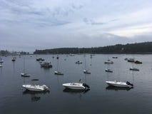 IMG_4931 λιμάνι σφραγίδων, ΕΓΩ Στοκ Εικόνες