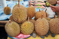 IMG_0318-durian-bali Royalty Free Stock Photo