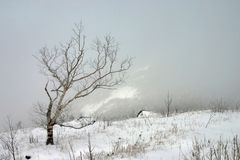 White silence - last snow in mountains stock photography
