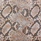 Imitación de la piel de serpiente Foto de archivo