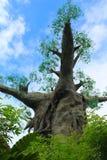 Imitación del baobab Foto de archivo libre de regalías