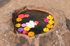 Imitate nature blow with flower on water surface. Water-well for decorate stock image
