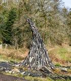 Imitatie van brand van de gevallen boomtakken royalty-vrije stock foto