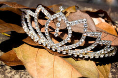Imitatiediamond tiara on bed of fallen-Bladeren Stock Foto's