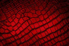 Imitation. Texture imitation  of crocodile skin for the background Royalty Free Stock Photography