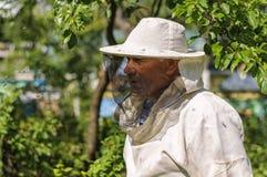 Imker arbeitet an dem Bienenhaus Stockbild