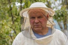 Imker arbeitet mit Bienen und Bienenstöcken auf dem Bienenhaus Stockbilder