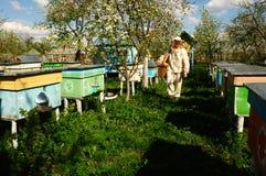 Imker auf Bienenhaus Lizenzfreie Stockfotografie