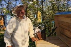 Imker auf Bienenhaus Stockbild