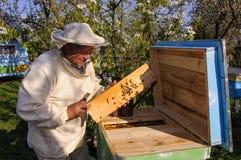Imker auf Bienenhaus Stockbilder