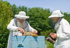 Imker an Bienenstock 1 Stockbild