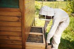 Imker in der Klage arbeitet am Bienenhaus Öffnendes hölzernes Bienenstock Bienenzuchtkonzept stockfoto