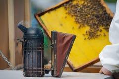 Imker, der Rahmen der Bienenwabe mit Arbeitsbienen im Freien hält Lizenzfreies Stockbild
