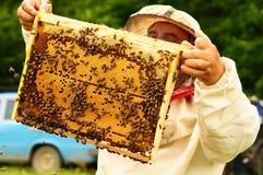 Imker, der Rahmen der Bienenwabe mit Bienen hält Lizenzfreie Stockbilder